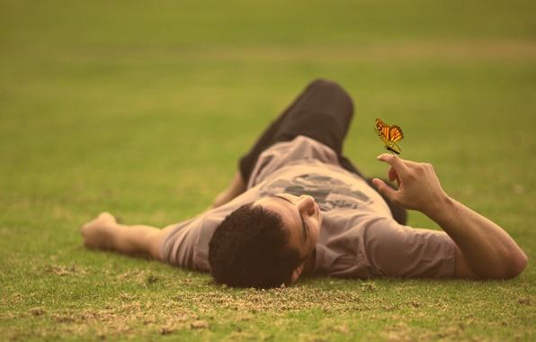 Картинка grass, field, butterfly, man, lying down