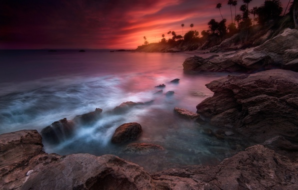 Картинка пляж, пальмы, вечер, выдержка, Лагуна, Калифорния, США, штат