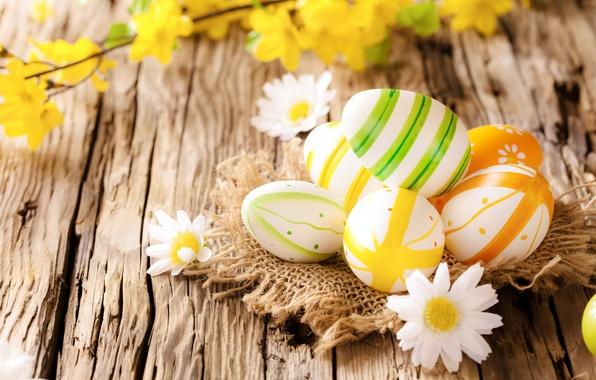 Картинка ромашки, яйца, пасха, wood, flowers, eggs, easter, camomile