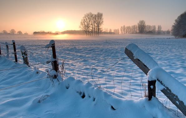 Картинка зима, поле, небо, солнце, снег, деревья, закат, забор, вечер, Германия, ограждение