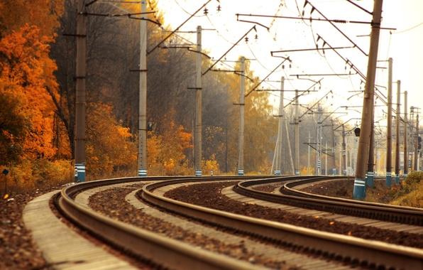 Картинка дорога, осень, деревья, пейзаж, пути, фото, золото, рельсы, поезд, поезда