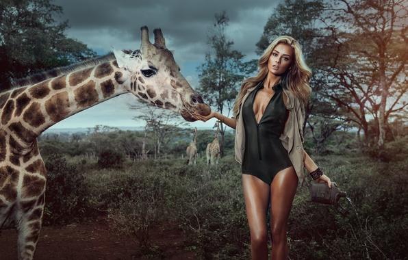 Картинка грудь, девушка, деревья, секси, фон, модель, жираф, блондинка, ножки, sexy, красотка, Veronika Klimovits, Miss Tuning …