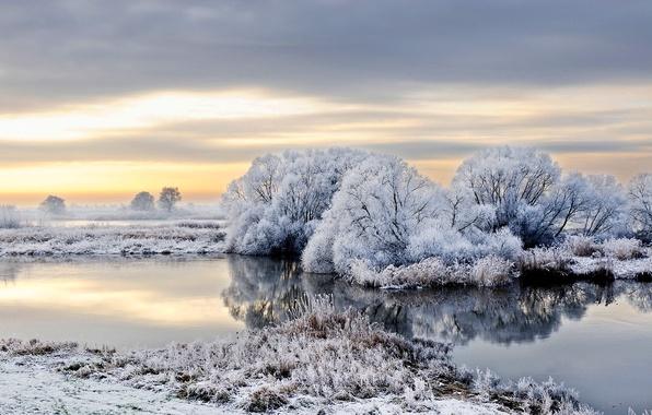 Картинка зима, иней, снег, деревья, река, Германия