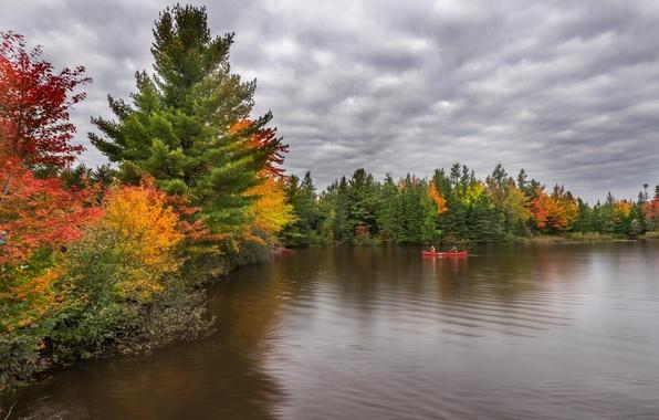 Картинка осень, река, красота, river, autumn, beauty