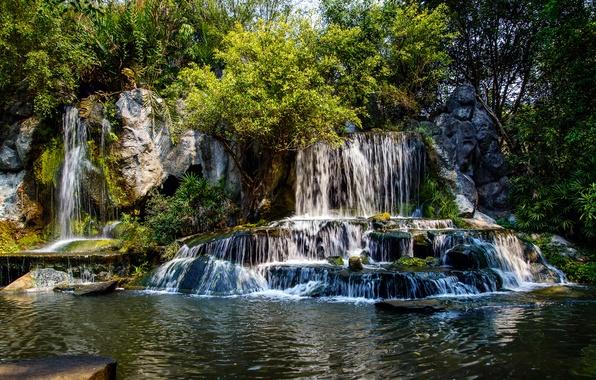 Картинка лес, деревья, река, камни, водопад, каскад