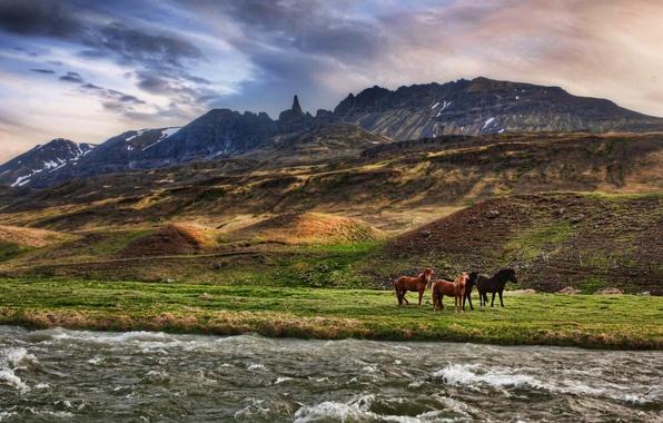 Картинка облака, горы, река, лошади