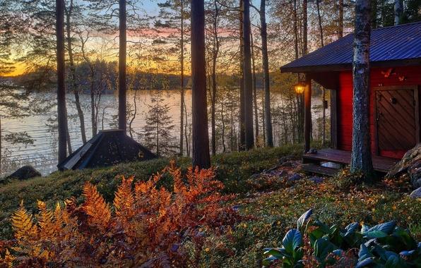 Картинка осень, лес, солнце, деревья, пейзаж, закат, вилла, дома, Природа, house, forest, архитектура, trees, landscape, nature, …