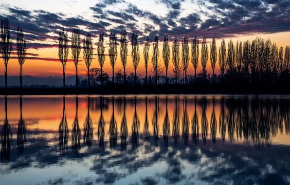 Картинка небо, вода, отражения, деревья, закат, вечер, Италия, силуэты, тополя