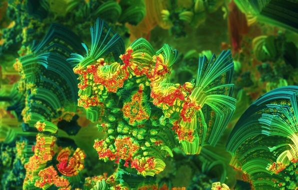 Картинка море, свет, цвет, кораллы, объем
