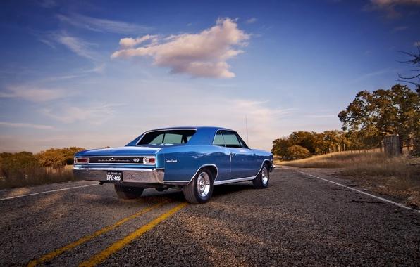 Картинка дорога, небо, облака, забор, поля, Chevrolet, колеса, сзади, 1966, Chevelle, сторона, задние фонари, фермы