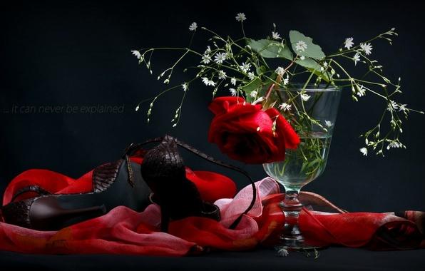 Картинка цветы, роза, туфли, ваза, платок