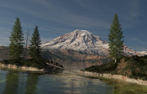 Картинка лес, снег, деревья, озеро, дерево, остров, гора, ель, арт, сухое