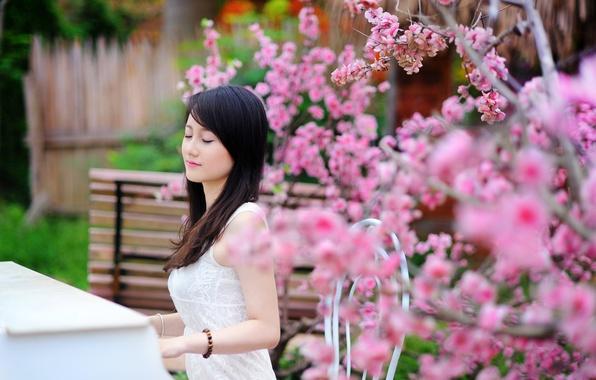 Картинка лето, девушка, музыка, сад, пианино
