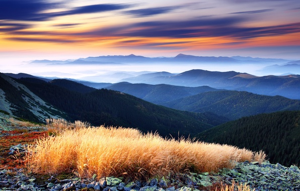 Картинка лес, небо, облака, деревья, горы, туман, вид, долина, горизонт, панорама, green decline, Higlands, красивейший