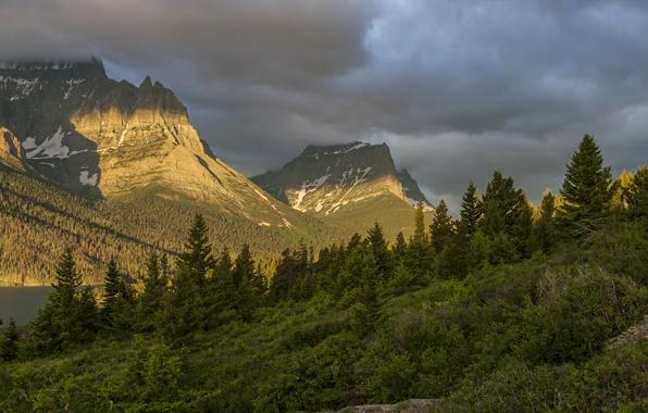 Картинка лес, горы, тучи, США, Glacier National Park, Montana