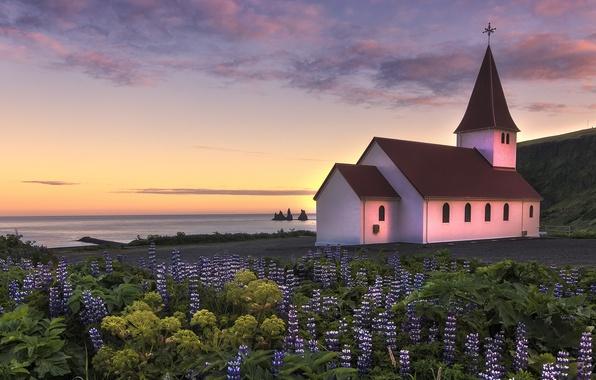 Картинка небо, облака, закат, цветы, океан, побережье, вечер, Исландия, церквушка, люпины
