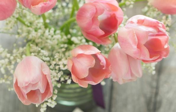 Картинка цветы, лепестки, тюльпаны, натюрморт