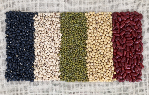 Картинка colors, beans, variety