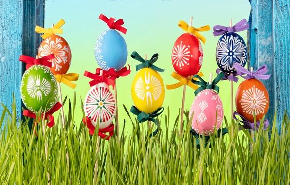 Картинка трава, яйца, весна, Пасха, flowers, spring, Easter, eggs, decoration, Happy