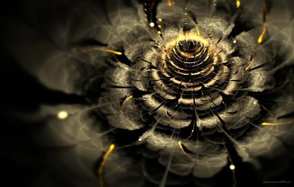 Картинка цветок, свет, абстракция, обои, графика, фрактал, боке