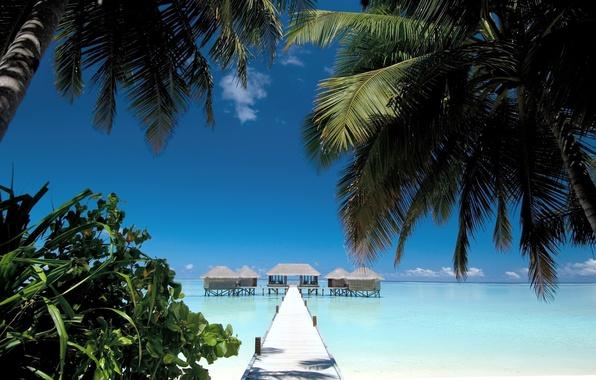 Картинка песок, море, пляж, лето, вода, пейзаж, пальмы, океан, берег, вид, дома, summer, мостик, beach, sky, …