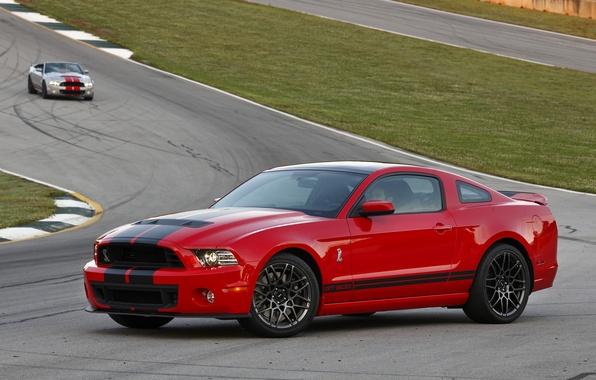 Картинка Mustang, Ford, Shelby, GT500, мустанг, форд, шелби, SVT, 2014