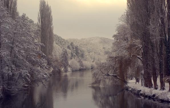 Картинка холод, лед, зима, лес, вода, снег, деревья, природа, река, ветви, водоем