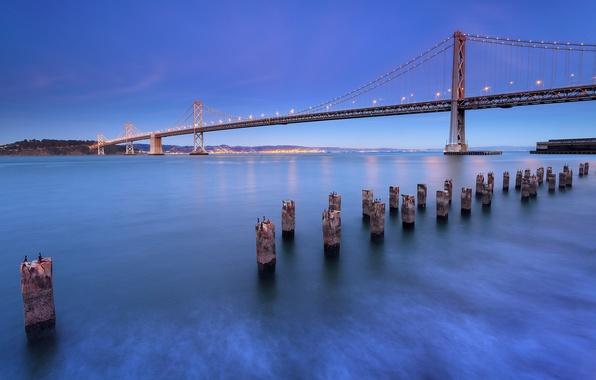 Картинка небо, пейзаж, мост, city, город, пролив, синева, берег, вечер, освещение, фонари, Калифорния, Сан-Франциско, USA, США, …