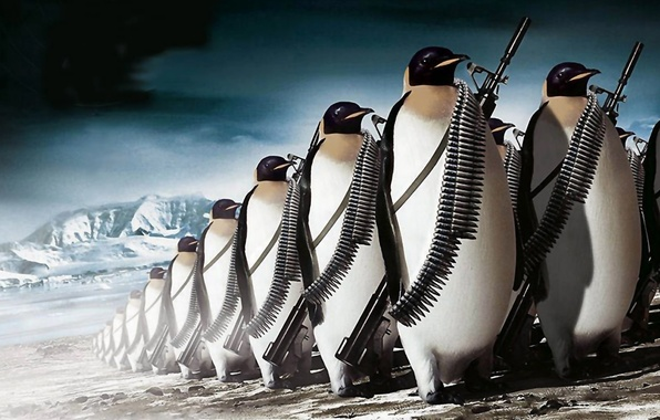 Картинка gun, ice, fantasy, weapon, army, animal, rifle, ammunition, the Antarctic, penguins