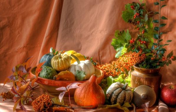 Картинка листья, ягоды, яблоко, тыква, натюрморт, блюдо