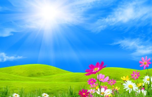 Обои небо трава солнце облака лучи цветы холмы