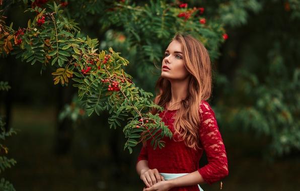 Картинка взгляд, девушка, ветки, лицо, парк, green, милая, модель, портрет, платье, red, красивая, прелесть, beautiful, симпатичная, …