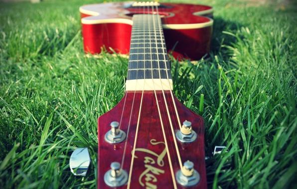 Картинка трава, природа, музыка, обои, настроения, гитара, растения, музыкальный инструмент