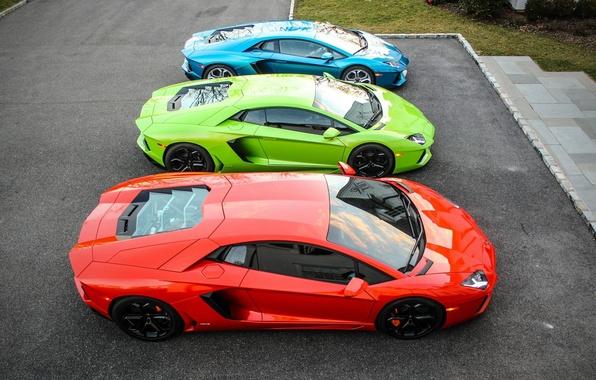 Картинка green, Lamborghini, red, blue, three, mixed, LP700-4, Aventador