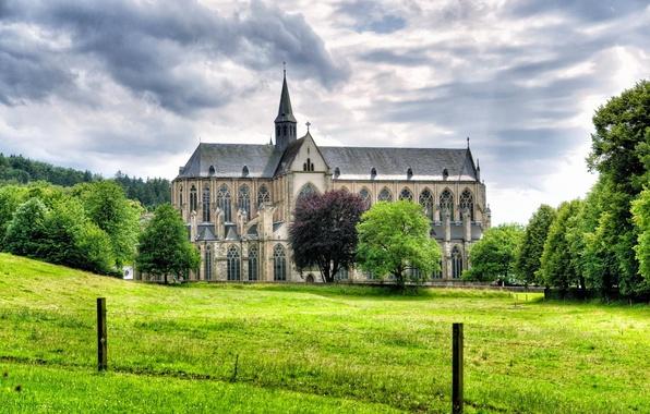 Картинка трава, деревья, пейзаж, Германия, собор, Germany, Альтенберг, Altenberg