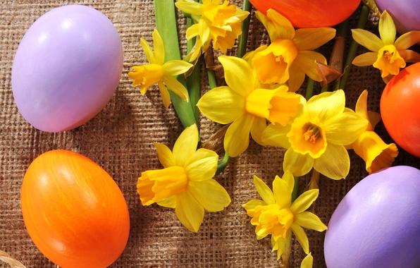 Картинка фото, Цветы, Пасха, Яйца, Праздник, Разное, Нарциссы
