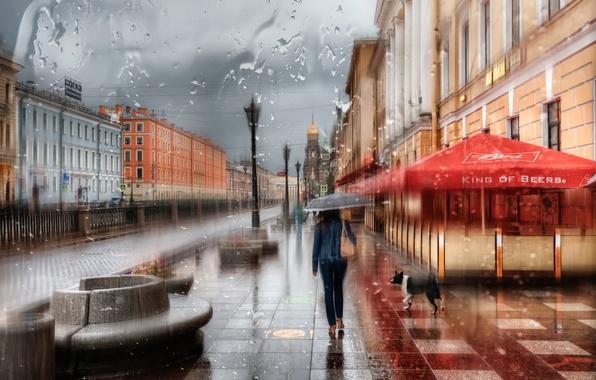 Картинка девушка, капли, дождь, зонт, Санкт-Петербург, Россия