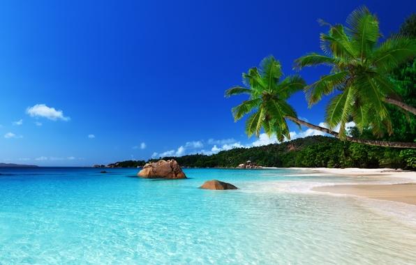 Картинка песок, море, пляж, небо, природа, камни, голубой, берег