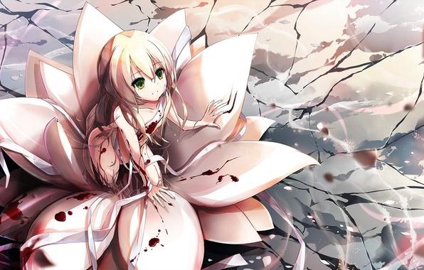 Картинка цветок, девушка, улыбка, кровь, аниме, арт, бинты, riburanomind