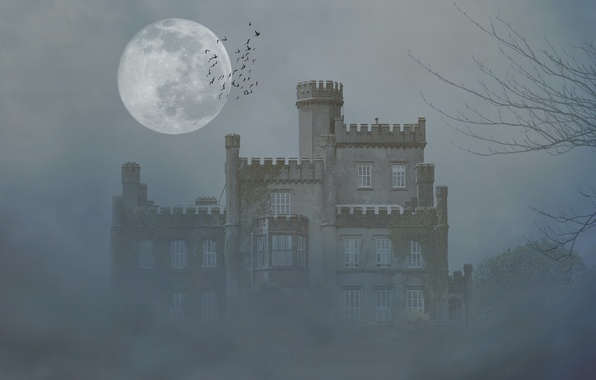 Картинка деревья, птицы, туман, замок, луна, мрак