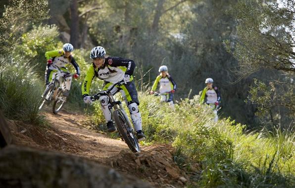 Картинка dirt, bike, mountain, rocks, hill, freeride, downhill, mtb, crazy, mountainbike