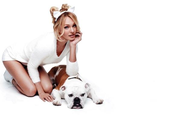 Картинка белый, девушка, поза, фон, модель, собака, блондинка, Кэндис Свейнпол, Candice Swanepoel