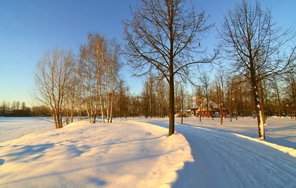 Картинка зима, дорога, небо, снег, деревья, утро, домик