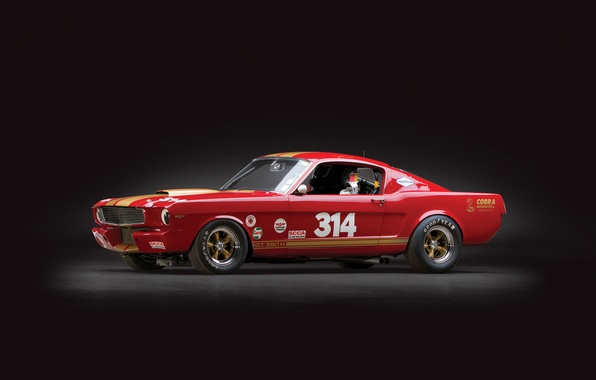 Картинка shelby, ford mustang, race car, gt350h