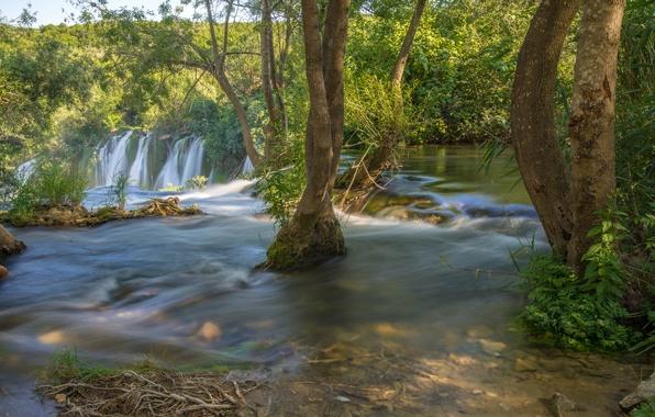 Картинка деревья, река, водопад, Босния и Герцеговина, Bosnia and Herzegovina, Kravice Falls, Trebižat river, Водопад Кравице