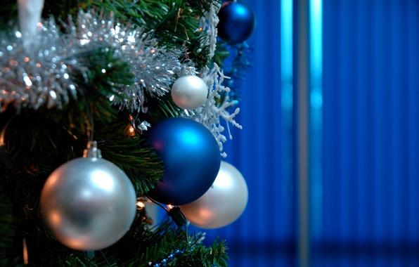 Картинка фон, праздник, widescreen, обои, игрушки, елка, новый год, шар, рождество, ель, wallpaper, christmas, new year, …