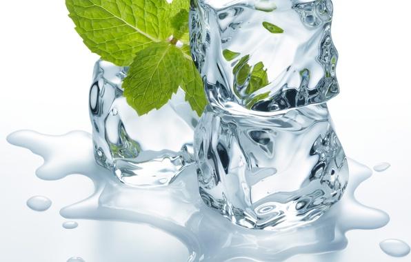 Картинка лед, вода, листики, кубики льда