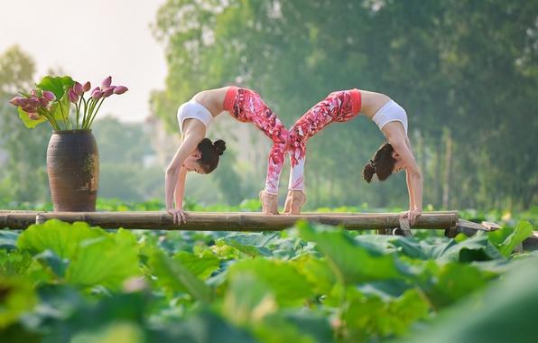 Картинка поза, девушки, гимнастика, йога, азиатки