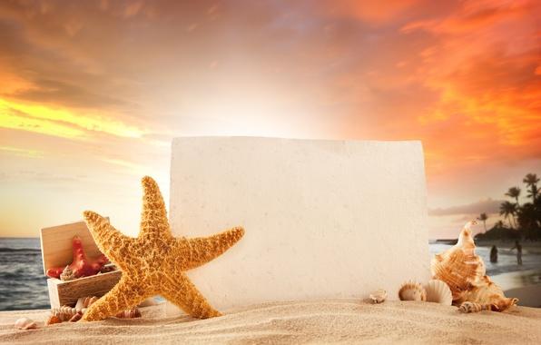 Картинка песок, море, пляж, лето, солнце, отдых, summer, beach, vacation, tropical, starfish, seashells
