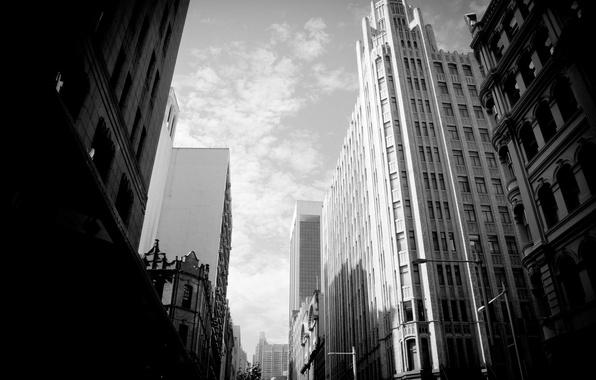 Картинка небо, белое, здания, небоскребы, черное